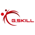 g.skill-logomic