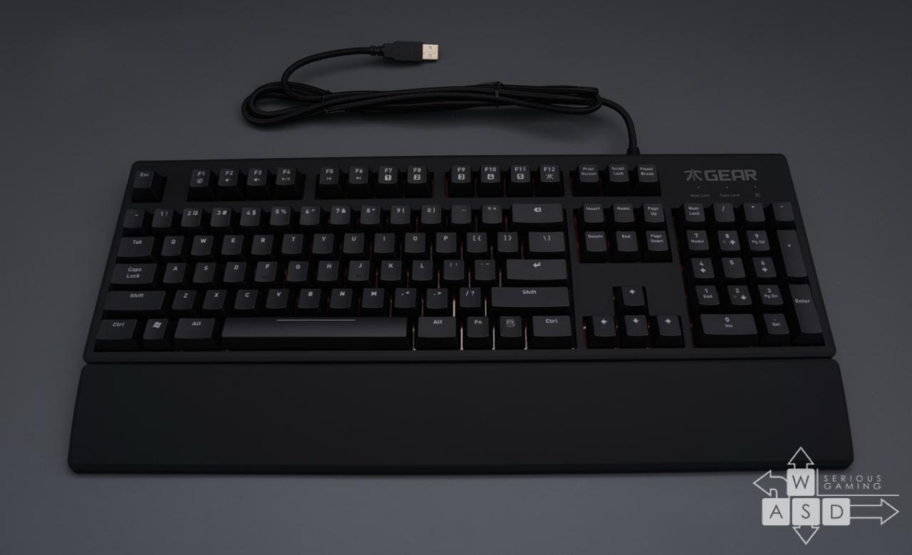 DSC5586