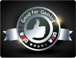 Good for gaming WASD Award