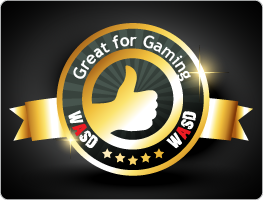Great for gaming WASD Award
