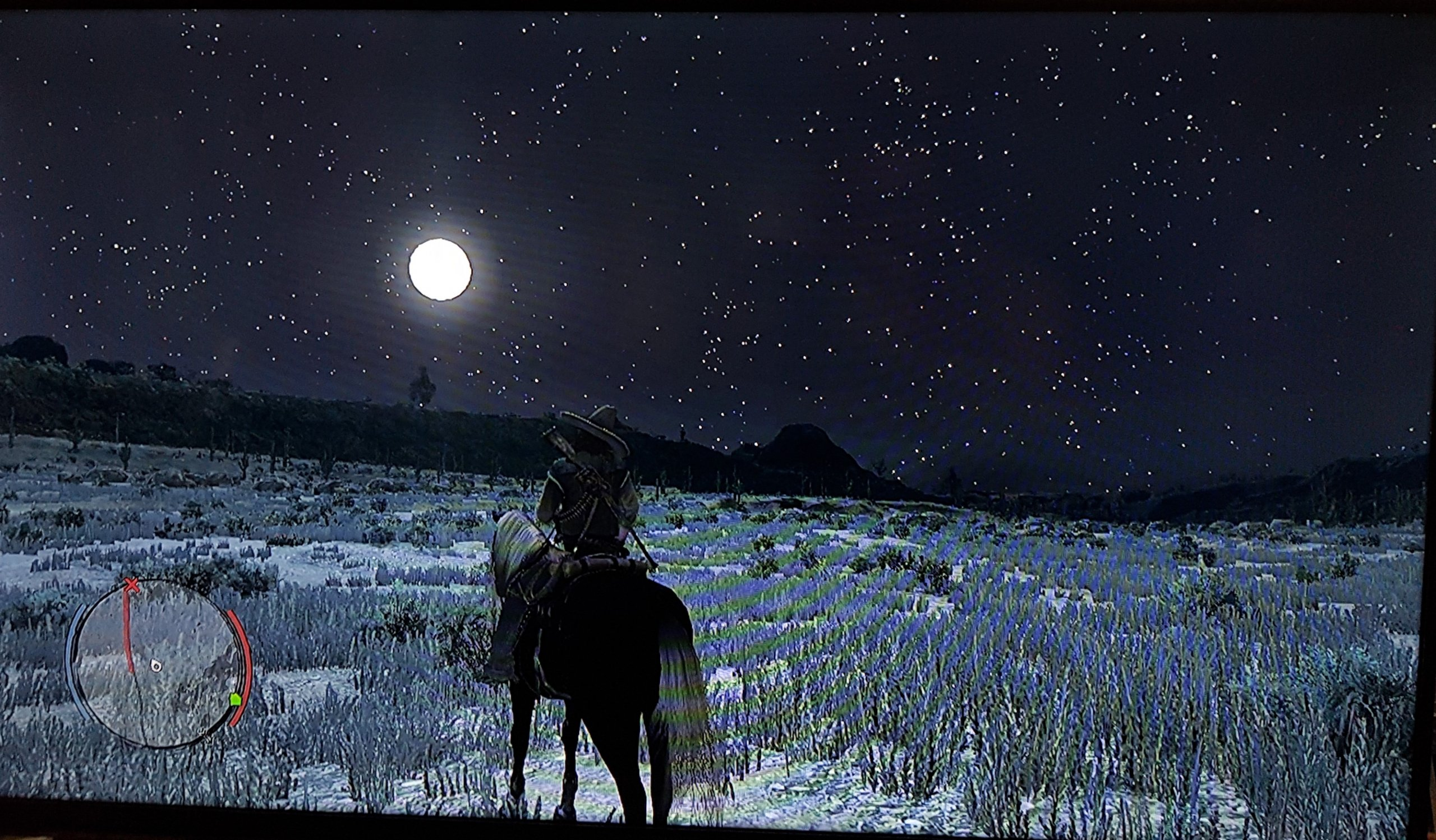 Red Dead Redemption Starry Night