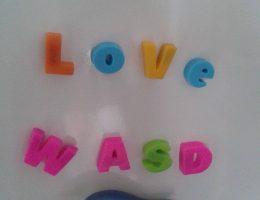 7 ani WASD (36/145)