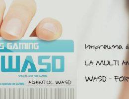 7 ani WASD (56/145)