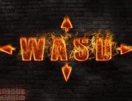 7 ani WASD (117/145)