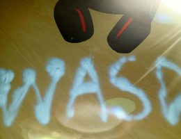 7 ani WASD (133/145)